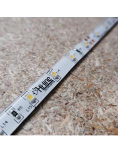 Naturweißer LED Streifen 24V 4,8 W/m IP54/65 CRI80 SMD3528