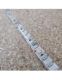 Blue LED Strip IP65