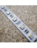 24V RGBW (RGB+NW) CRI80 LED Streifen 10m Rolle 12mm