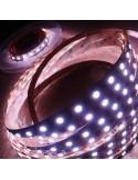 14,4W/m 24V RGB+WW IP00 CRI80 LED-Streifen SMD5050 10m Rolle