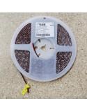 Red IP20 LED strip, 3528-SMD, 60LEDs/m, 4.8W/m, 24V DC, 5 meters roll