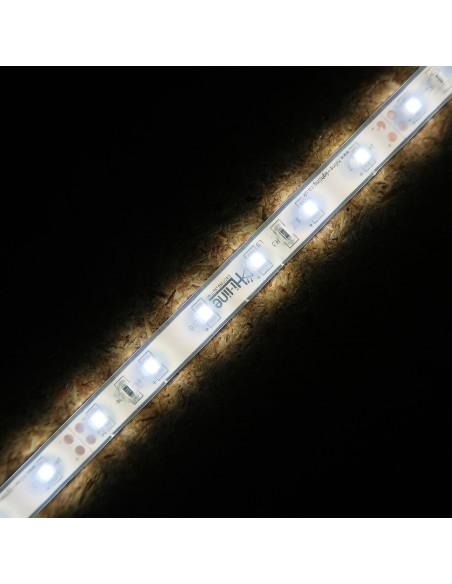Kaltes Weiß LED-Streifen 24V-4.8W/m- IP68-CRI80-SMD3528
