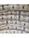 Tunable white LED strip 120 LEDs per meter 14.4W