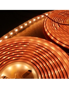 IP67 10m RGBW Warm White LED Strip 24V-14.4W/m