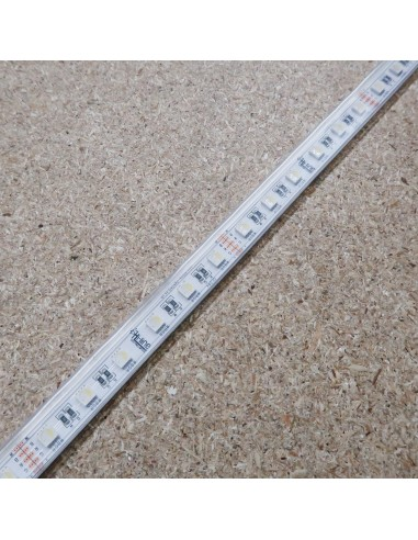 IP67 10m RGBW Cool White LED Strip 24V-14.4W/m