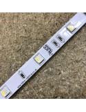 RGBW LED-Streifen (RGB+WW) 24V-7,2W/m- IP00-CRI80-SMD5050