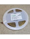 COB LED Strip 4000K CRI+90 - 528 LEDs/m - 5m roll